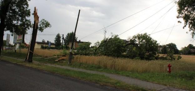 Drzewa zniszczyły linie energetyczne m.in. w Ćwiklicach