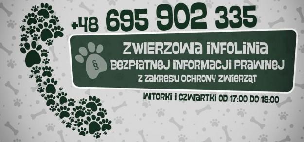 materiały informacyjne fundacji