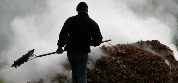 Palenie liści powoduje spore zadymienie otoczenia / fot. pixabay