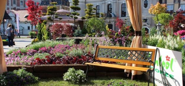 W jeden weekend w roku pszczyński rynek zamienia się w piękny ogród