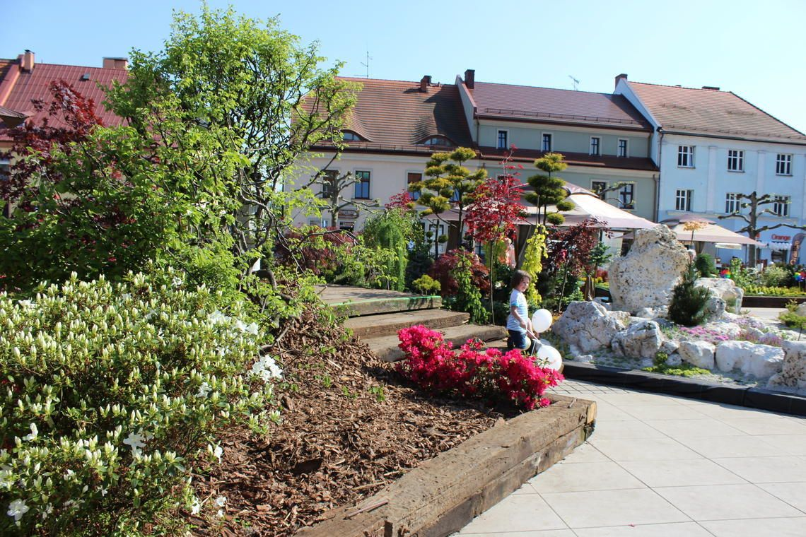 Daisy Days: piękne ogrody i inne atrakcje