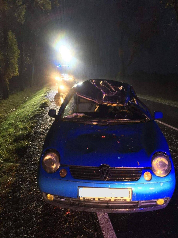 Wypadek w Studzionce: sarna na drodze. Jedna osoba w szpitalu