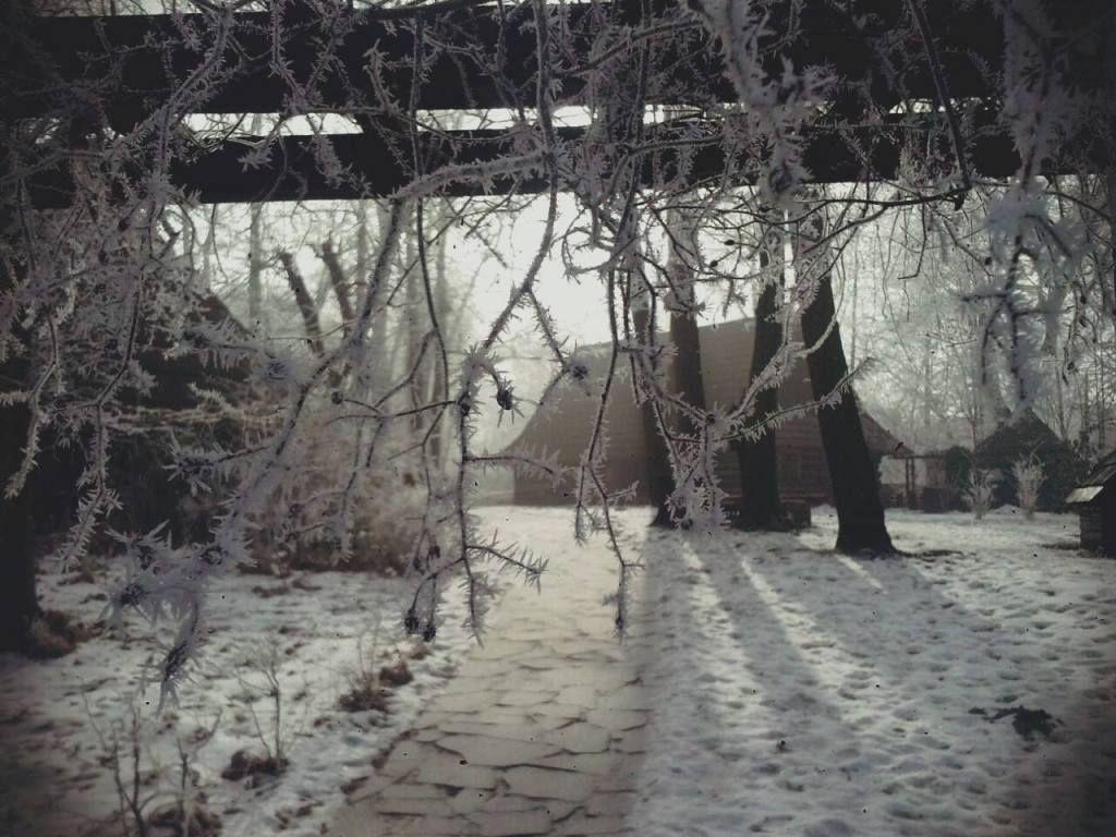 Odwiedź skansen w zimowej odsłonie