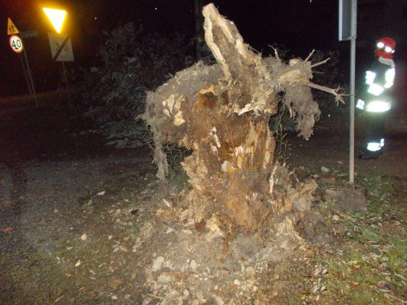 Wiał silny wiatr: 14 interwencji, zniszczone auta i dach domu