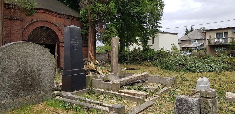 Trwa zbiórka na ratowanie cmentarza żydowskiego w Pszczynie