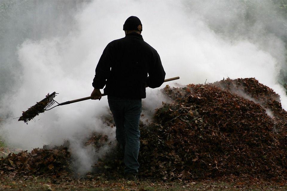 Zakaz spalania liści i innych odpadów zielonych na posesjach. Co z nimi zrobić?