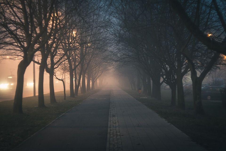 IMGW: ostrzeżenie o gęstej mgle