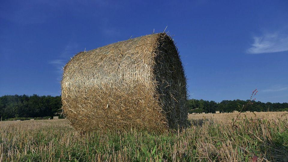 Nabór wniosków o dofinansowanie na usuwanie odpadów rolniczych w gminie Suszec