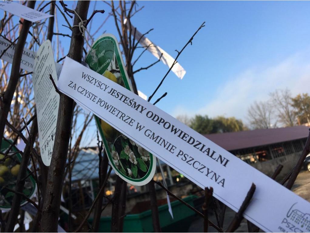 Jak gmina Pszczyna walczy ze smogiem? Burmistrz przedstawił raport