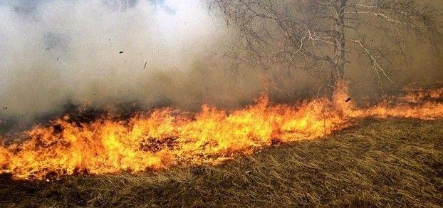 Stop pożarom traw! Strażacy interweniowali już 6 razy!