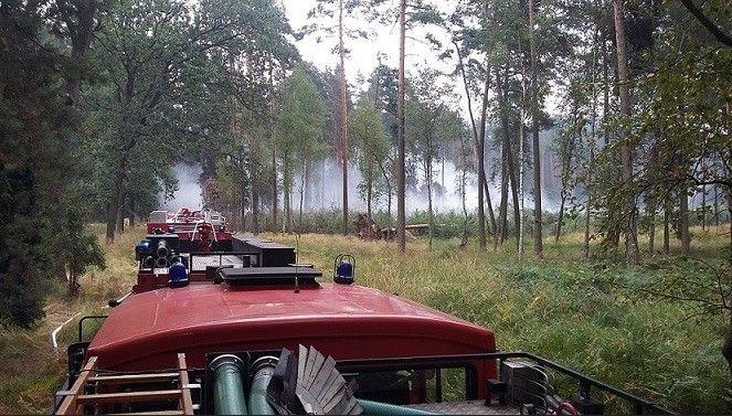 Duże zagrożenie pożarowe w lasach
