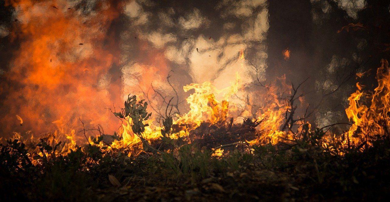 Wypalanie traw jest niebezpieczne i niedozwolone!