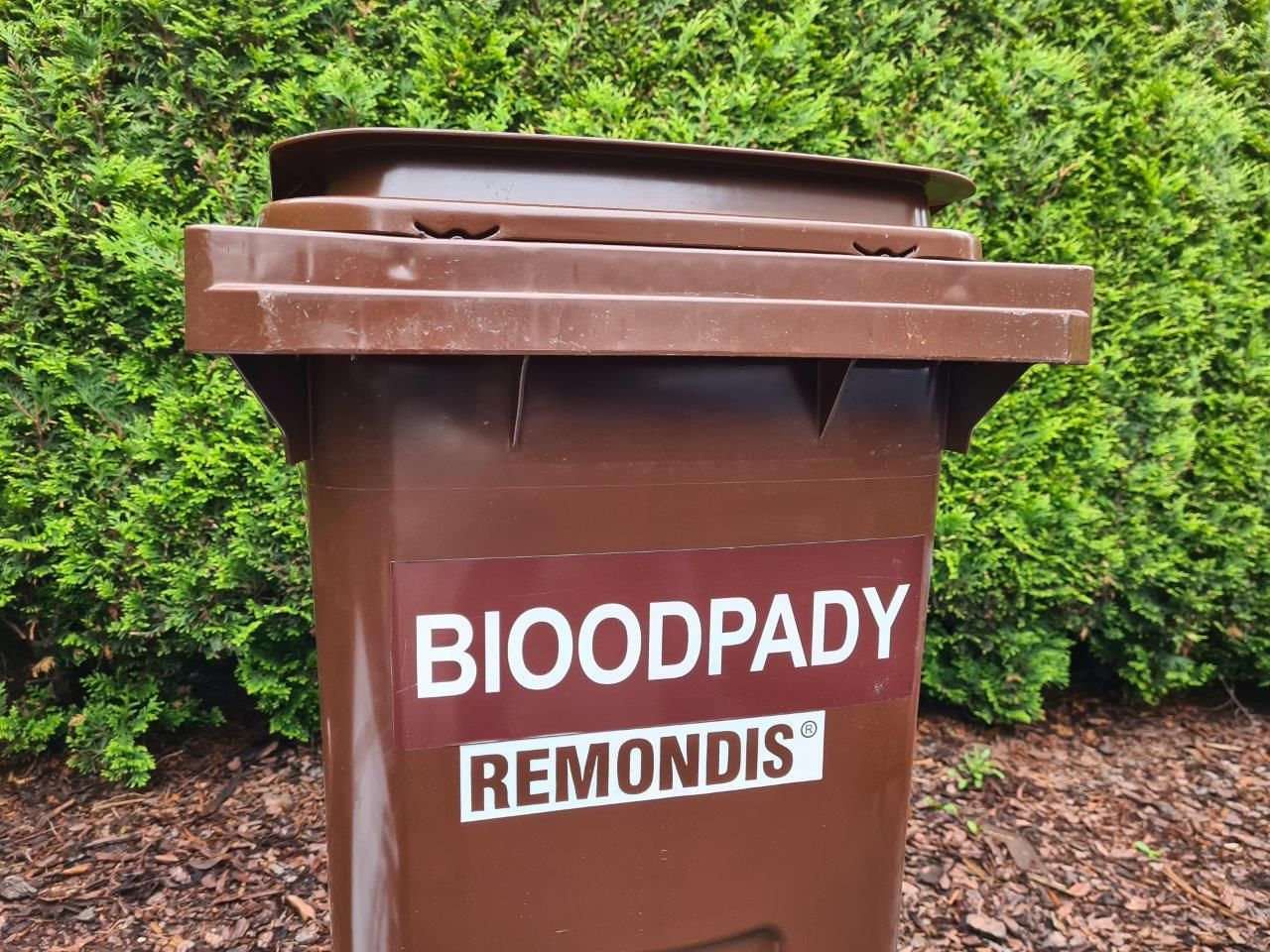 Trwa dystrybucja pojemników na bioodpady
