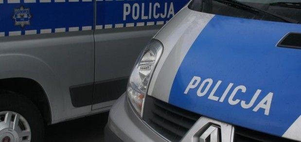 Policjanci pomogli ocalić konie z przewróconej przyczepy