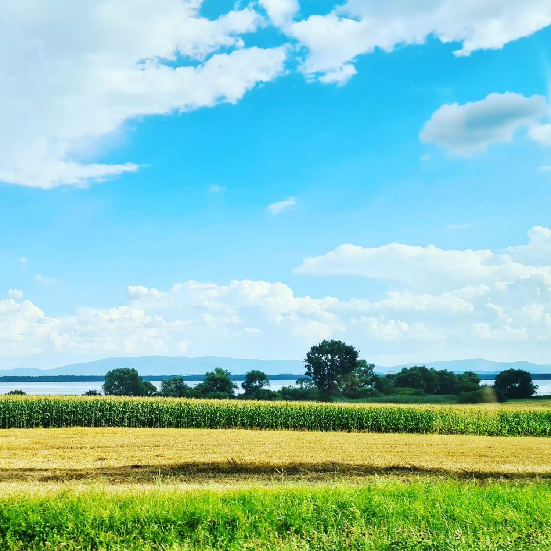 Projekt miejscowego planu zagospodarowania przestrzennego sołectwa Wisła Wielka do wglądu