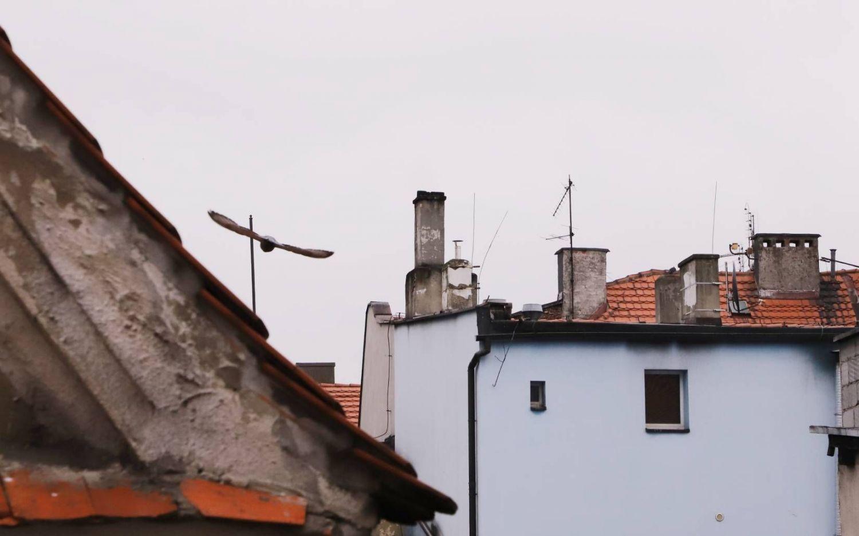 Gmina złożyła wniosek o automatyczną stację pomiarową jakości powietrza