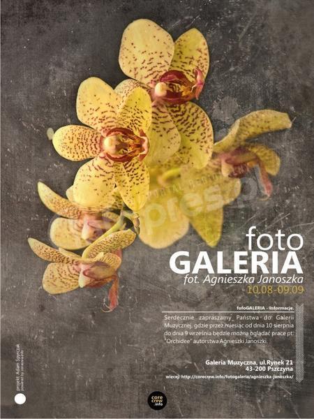 fotoGALERIA / Agnieszka Janoszka / Galeria Muzyczna