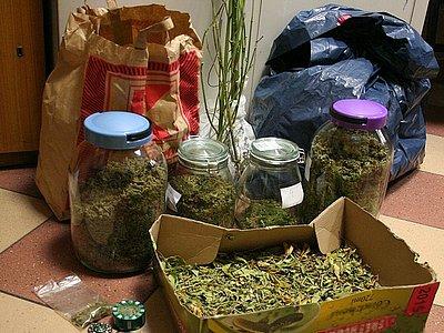 Zlikwidowali uprawę marihuany