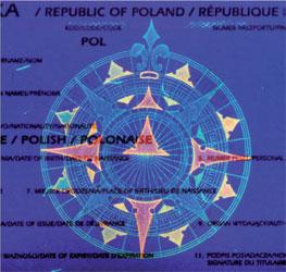 Paszporty na Piastowskiej 40...w Bielsku